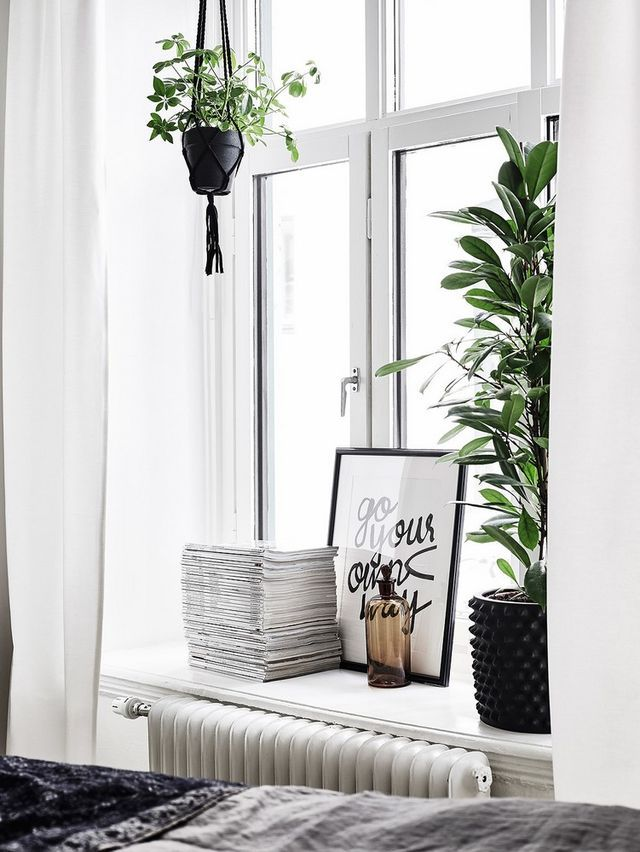 Kiva ikkunasyvennys kasveille, nice window with plants, NOIR ET BLANC AVEC DU SÉPIA