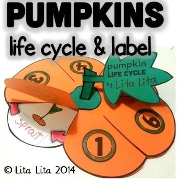 This is a foldable that you can use during Halloween to teach your students about Life Cycle or Parts of a pumpkin