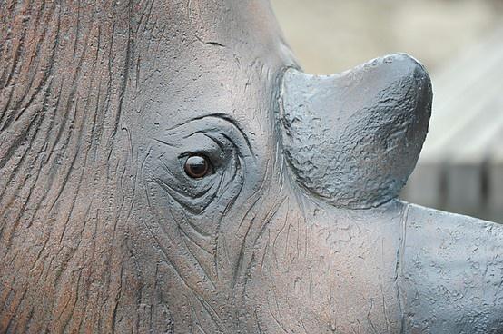 The Addio alla Fine rhinoceros