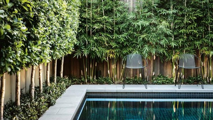 pool-bamboo-Nathan-Burkett-Design-dec15