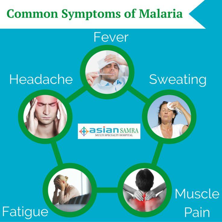 Common Symptoms of Malaria Fever Headache Sweating Fatigue ...