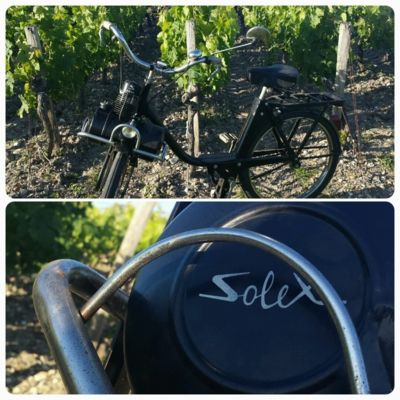 A Glimpse into a Bordeaux Summer ! Vintage vehicles in the vineyard