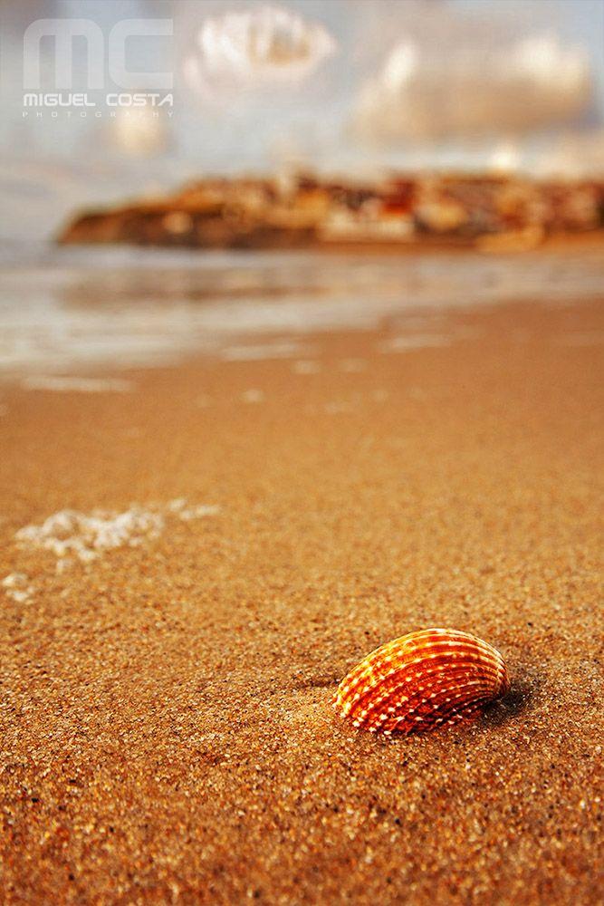 Praia de São Pedro de Moel, #Leiria #Portugal