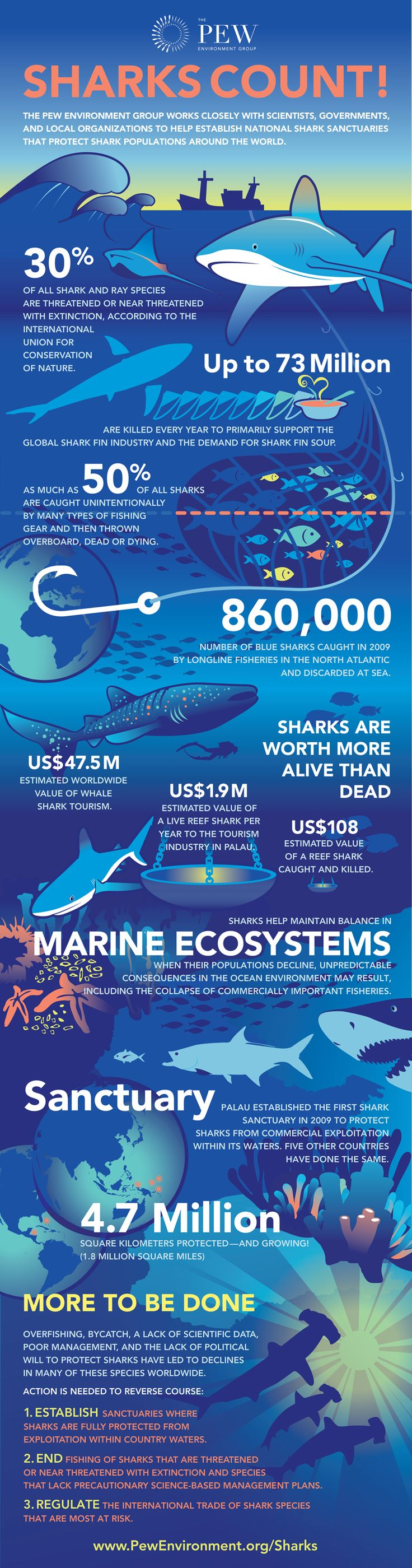 Facts-Of-Marine-Ecosystem