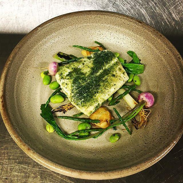 Butter poached Hapuka, umami brothe, blush turnip, charred spring onion, sea succulents and cloudy bay clams @117dining #hapuka #northsideseafoodsuppliers  #117dining #117 #ihgfoodie #intercontinentalsydney #igers #instahub #instachef #instafood #instachef #instagood #instadaily #instagramhub #chef #cheflife #chefsofinstagram #food #foodie #foodsii #foodporn #truecooks #life #love #chefstalk #foodpornshare #cookniche #sydneyfoodie