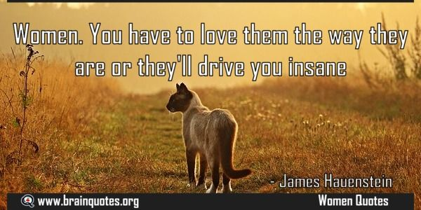 Women You have to love them the way they are or theyll drive you insane Meaning  Women. You have to love them the way they are or they'll drive you insane  For more #brainquotes http://ift.tt/28SuTT3  The post Women You have to love them the way they are or theyll drive you insane Meaning appeared first on Brain Quotes.  http://ift.tt/2mAbLzY