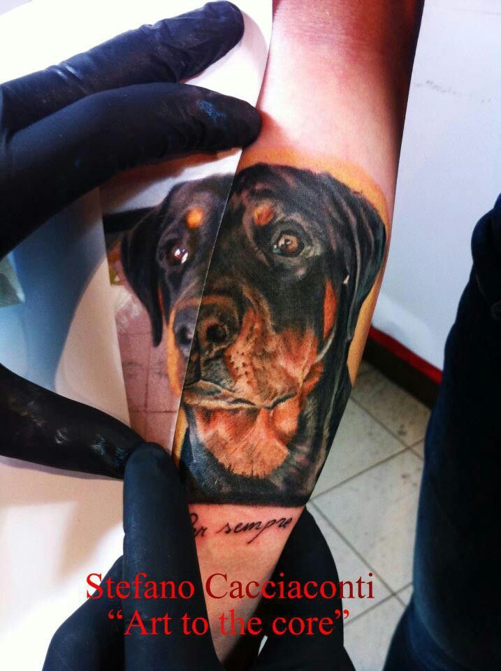 38 best rottweiler tattoos images on pinterest animal tattoos tattoo ideas and awesome tattoos. Black Bedroom Furniture Sets. Home Design Ideas