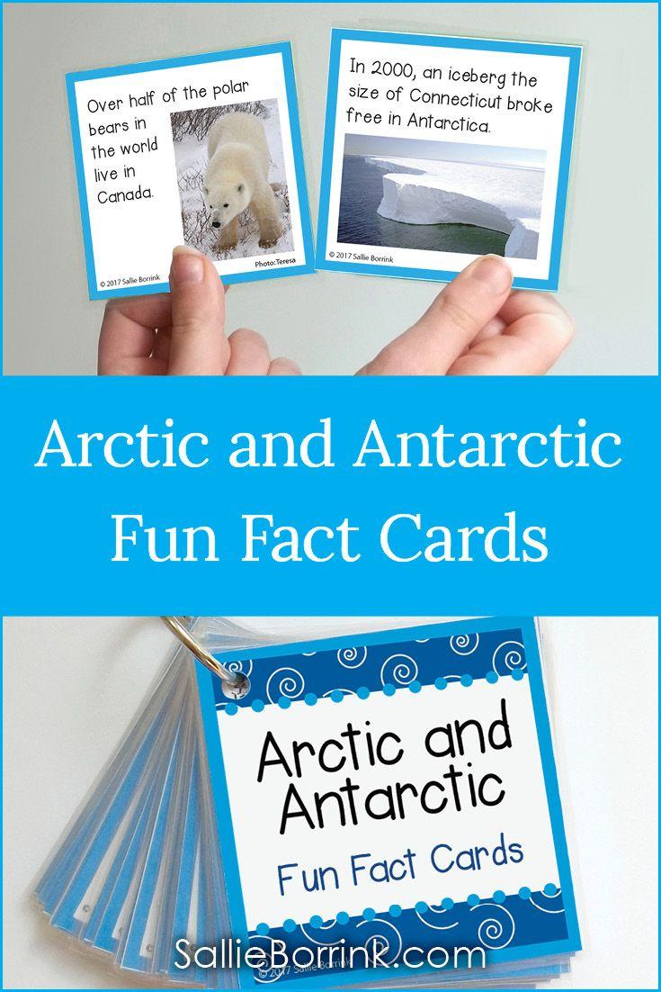 Arctic And Antarctic Fun Facts Cards A Quiet Simple Life With Sallie Borrink Arctic Fun Facts Polar Bear Theme [ 1102 x 735 Pixel ]