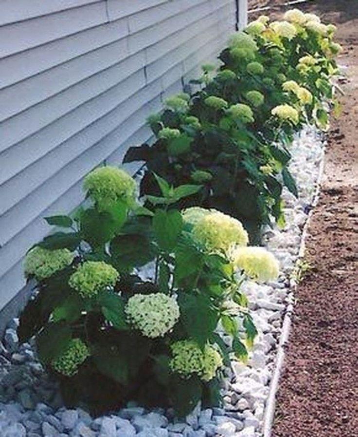 49 Idéias de paisagismo quintal de baixa manutenção   – Low Maintenance Garden Ideas