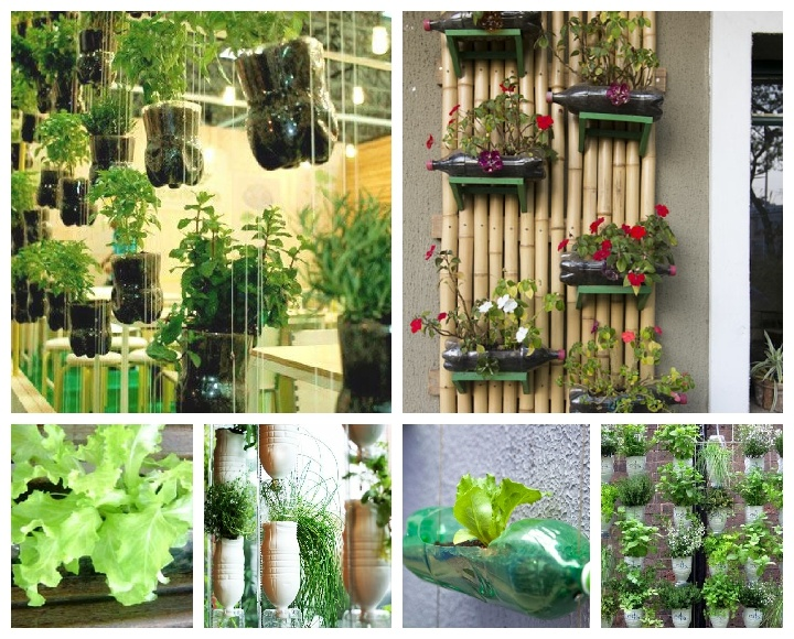 Jardines verticales con botellas de pet hidroponia for Ideas para decorar jardineras