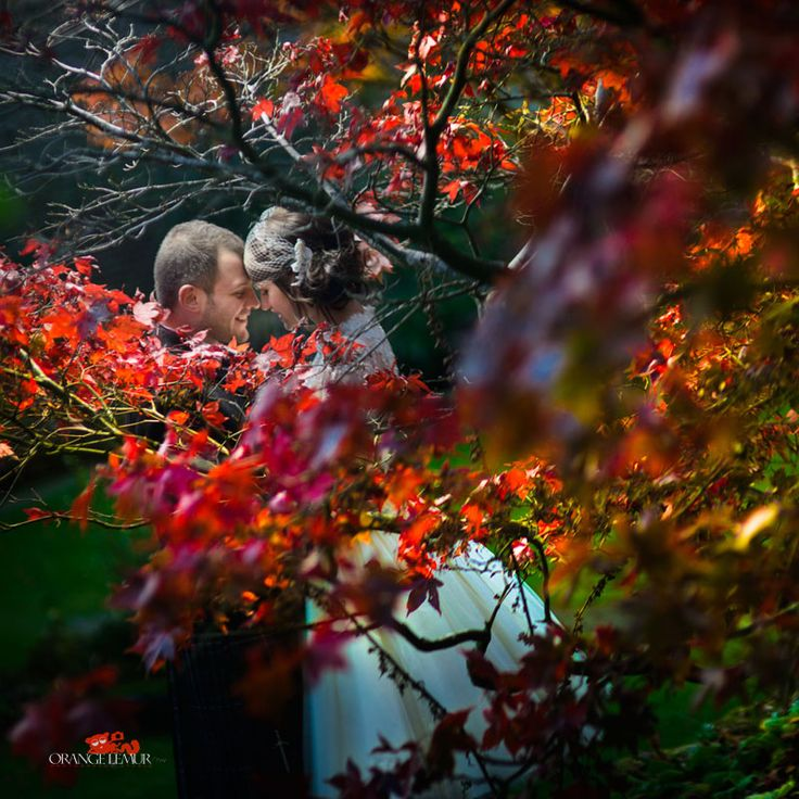 autumnal wedding photos