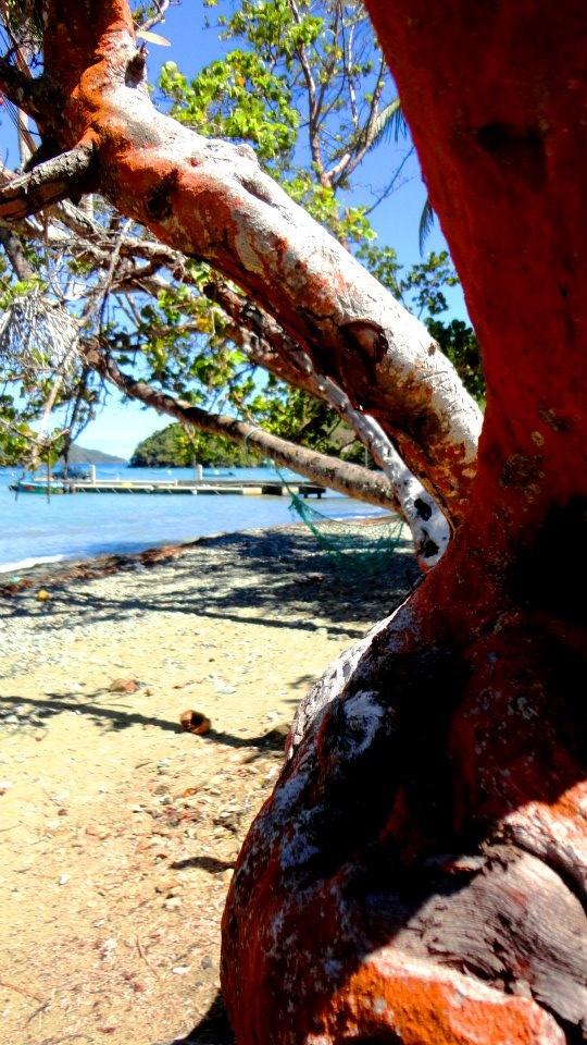 Speyside, Tobago.  #60days #tobago