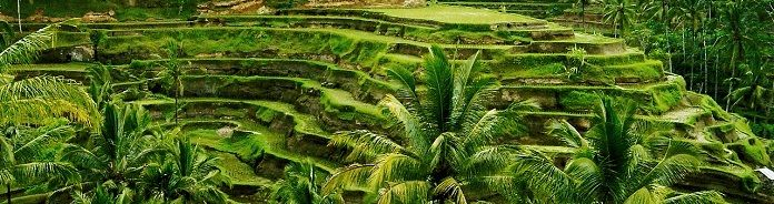 Bali Tours - Be Bali Tour