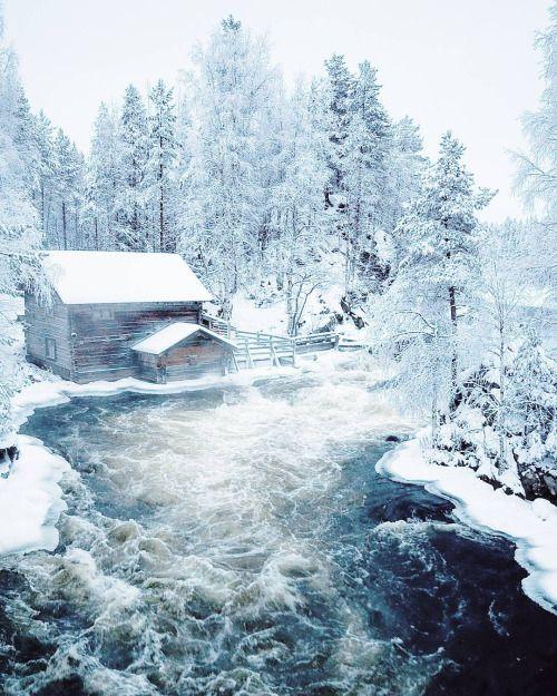 """opticcvlture: """" myyrinen ❄ Steamy beauty ❄ Oulanka National Park """""""