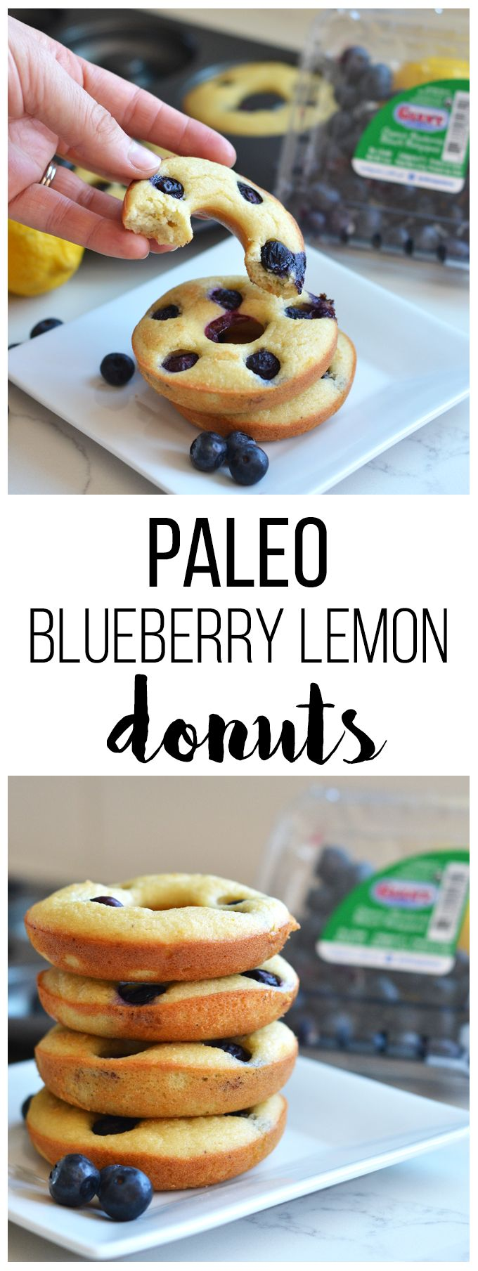 These Paleo Blueberry Lemon Donuts are the perfect grain free and refined sugar free way to enjoy your favorite treat!