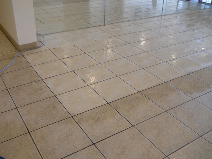 24 best Carpet Cleaning Tips Tampa, FL images on Pinterest ...