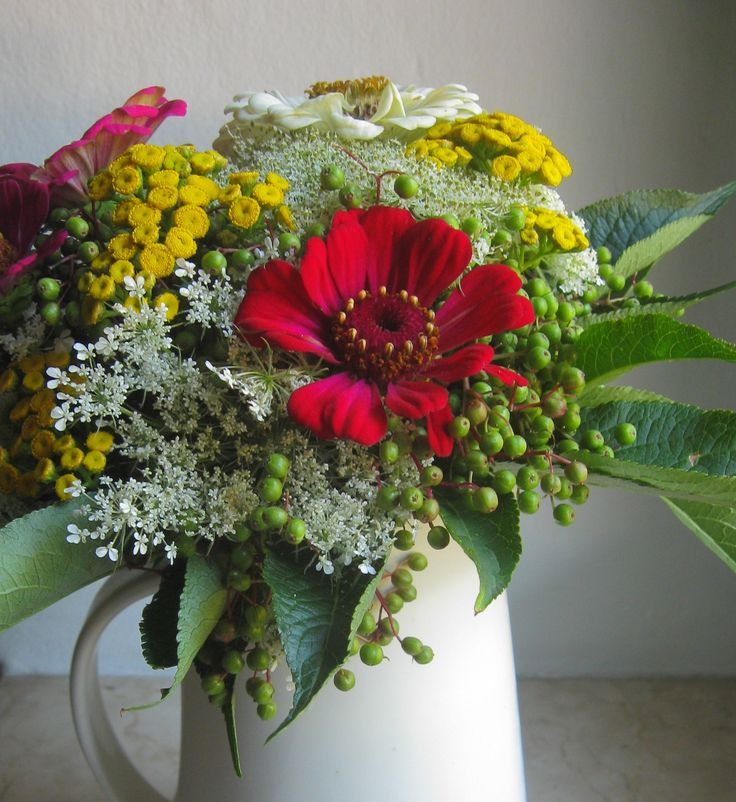 #bouquet di #zinnie, carote selvatiche, sambuco e tanaceto
