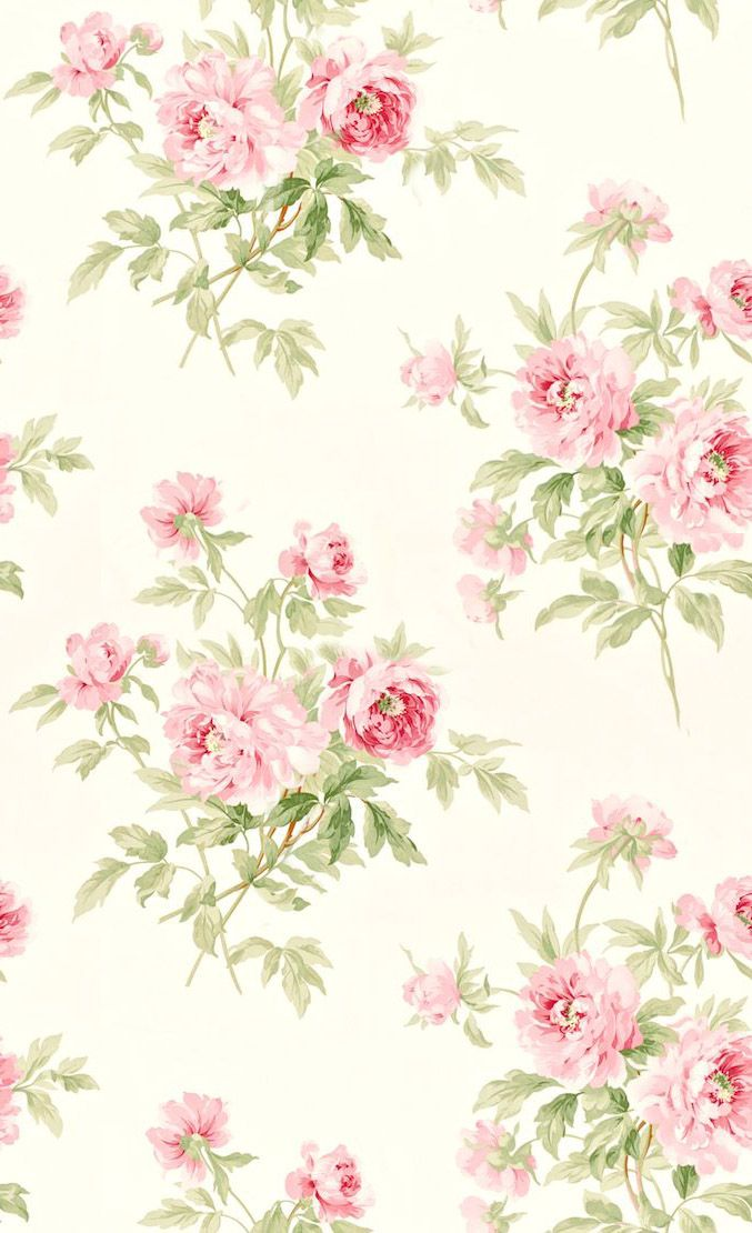 cream background pink roses