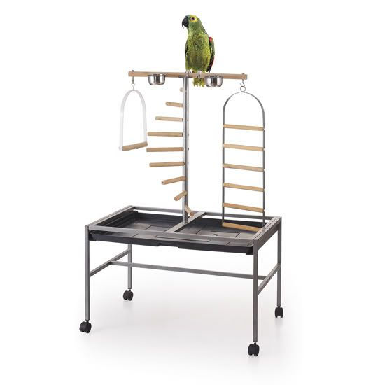 The-Parrot-Bird-Play-Stand-with-Ladder-and-Swing