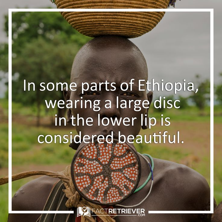 Learn fascinating facts about the beauty and history of Ethiopia, including its rich culture, surprising statistics, economic struggles, and much more.