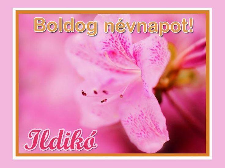 boldog névnapot ildikó képeslap Andrea (makovicsandrea) on Pinterest boldog névnapot ildikó képeslap