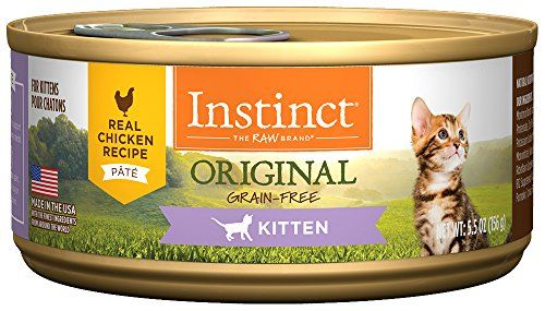 The 8 Best Wet Foods For Your Kitten In 2020 Kitten Food Natural Cat Food Cat Food Reviews