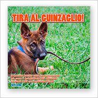 dvd educazione del cane tirare al guinzaglio