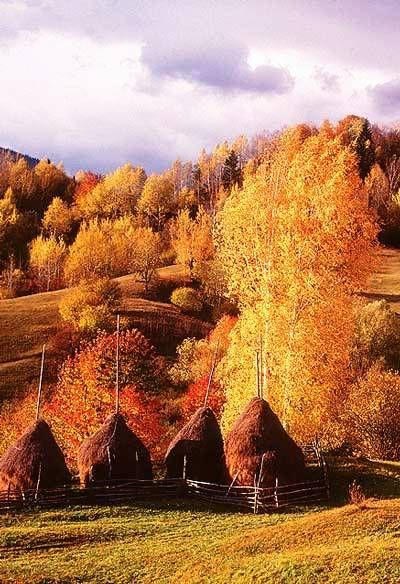 Fall foliage in Transylvania