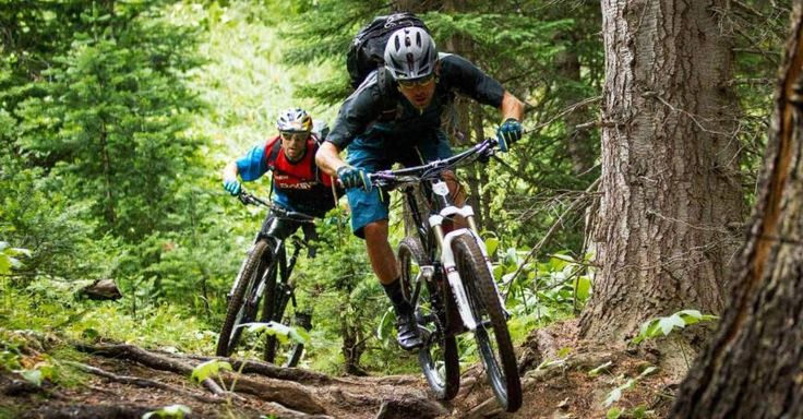 The Best Mountain Bike Brands Companies