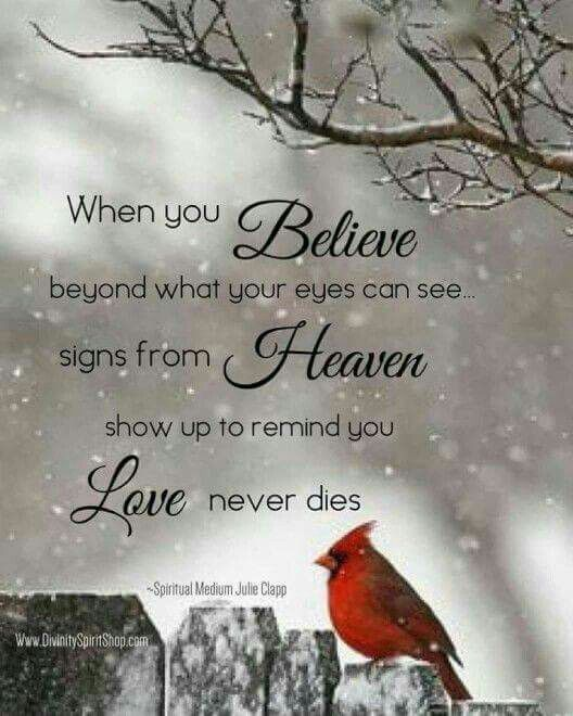 When you Believe beyond what your eyes can see signs from Heaven show up to remind you Love never dies. Amen!