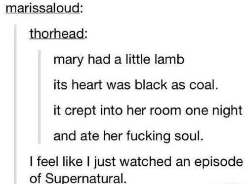 The Best of Tumblr
