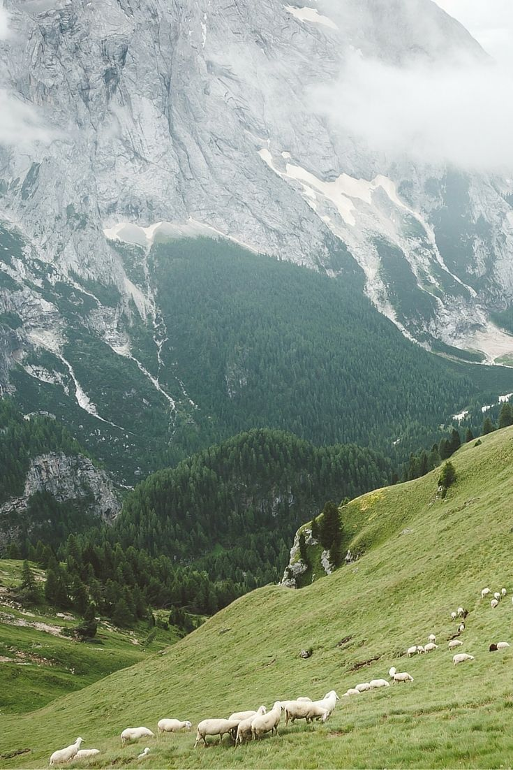Passo di Fedaia - Check more photos in our blogpost about the  Summer in the Dolomites - Val di Fassa - Travel & Photography All the Places you will go
