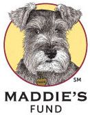 Maddie's fund is one of the most well-respected animal welfare organizations. Their work is exemplary across many issues, including making America No Kill and pioneering work in the sphere of shelter medicine.