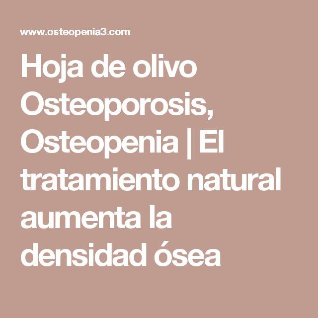 Hoja de olivo Osteoporosis, Osteopenia |  El tratamiento natural aumenta la densidad ósea
