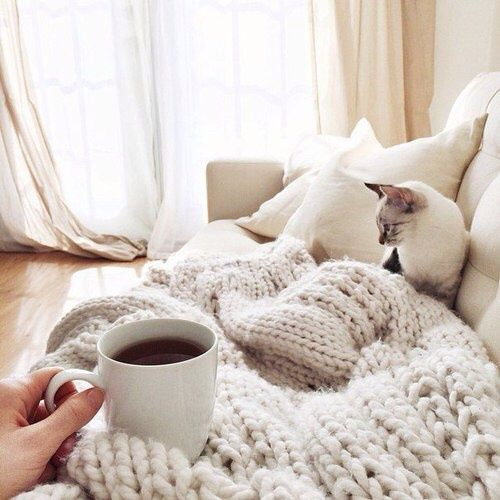 Every morning should start with coffee and kitties. #Cozy #Adorable #Comfy
