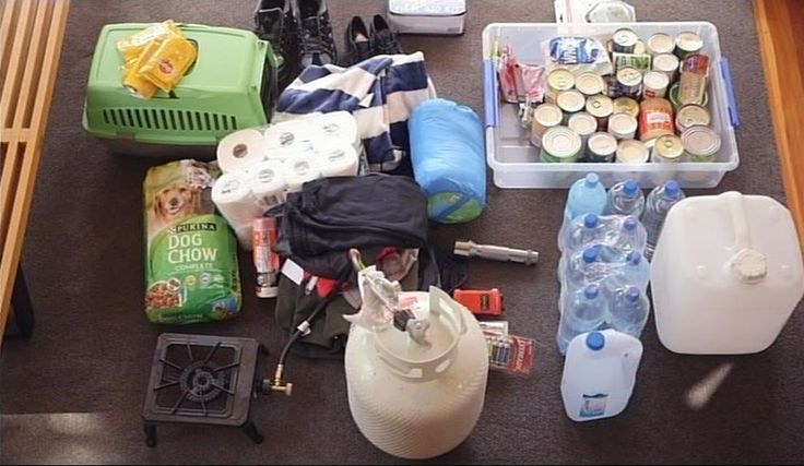 Getting your Family and Pets prepared for a Natural Disaster