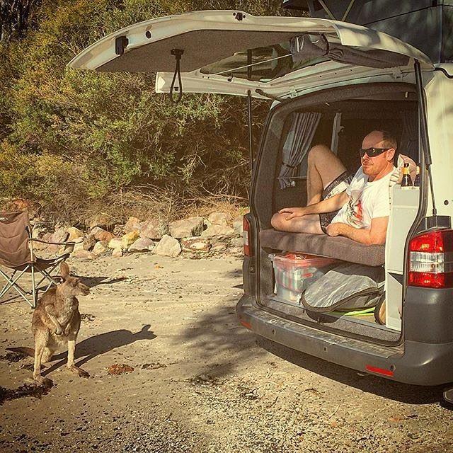 Nothing like an early morning #vancrush and a #kangaroo. . . Repost from @suaconterranea using #kangaroo  #vanlife  #campervan #ourcamplife #vanlifediaries #homeiswhereyouparkit #seeaustralia  #vwcamper