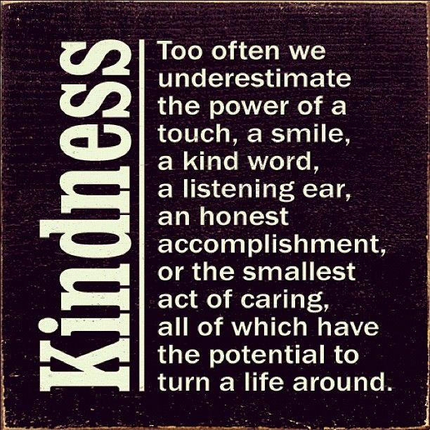 37c5e4a494d64c03b7582c423677329d--kindness-matters-kindness-quotes.jpg
