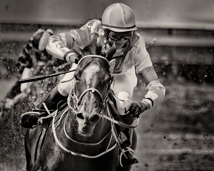 Horseracing -Breathe by Anders Stangl on 500px