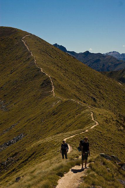 Kepler Track Alpine Section