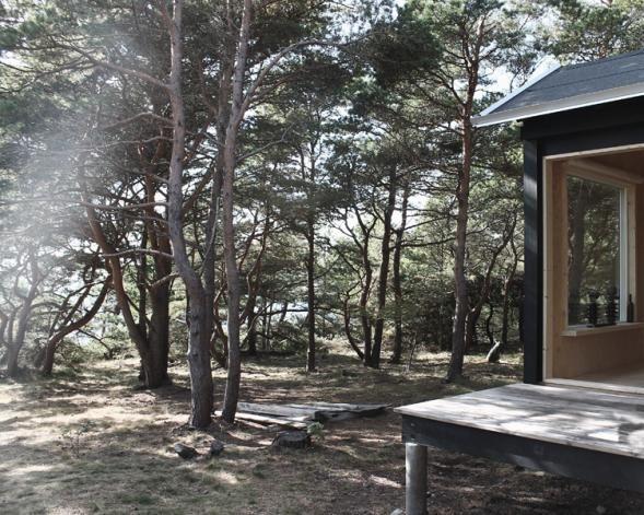 sauna in wood
