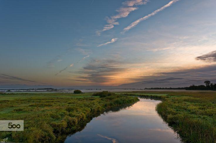 Foggy Sunrise over Biebrza River by Krzysztof Ruzikowski on 500px