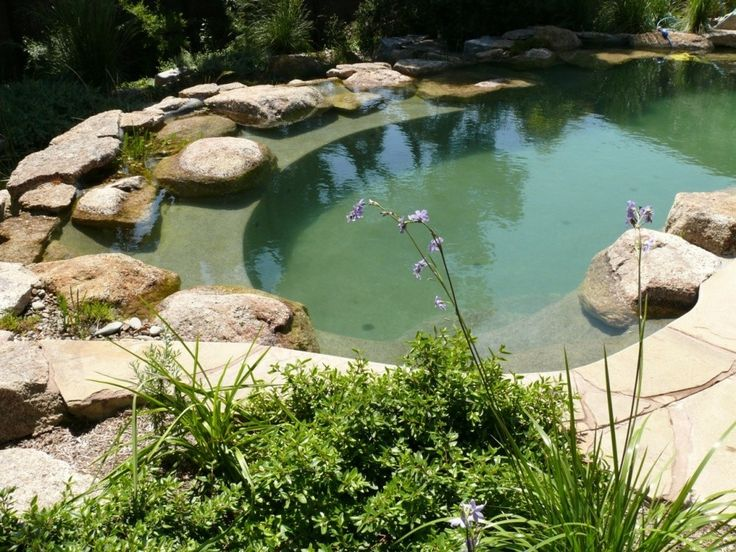 Natural bio-filtered swimming pool