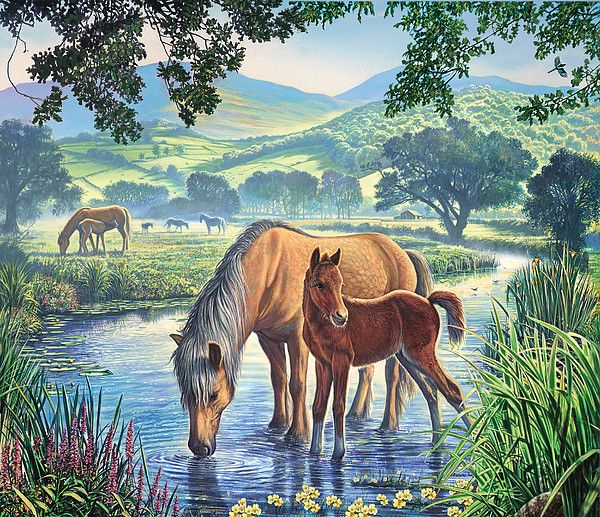 Horses Equine Painting Art