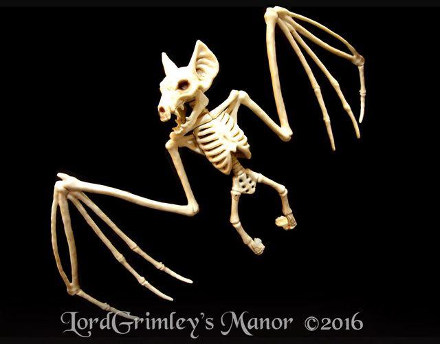 new 2016 bonez bat skeleton halloween prop horror undead rodent decoration - Halloween Skeletons