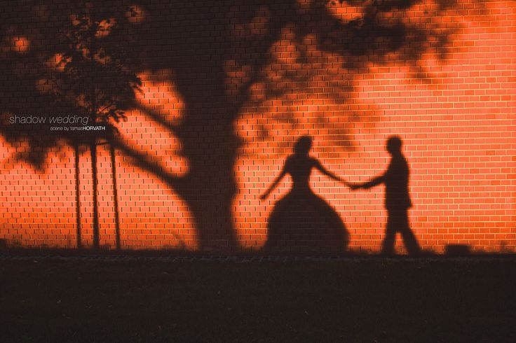 Shadow wedding by HorvathTamas on 500px