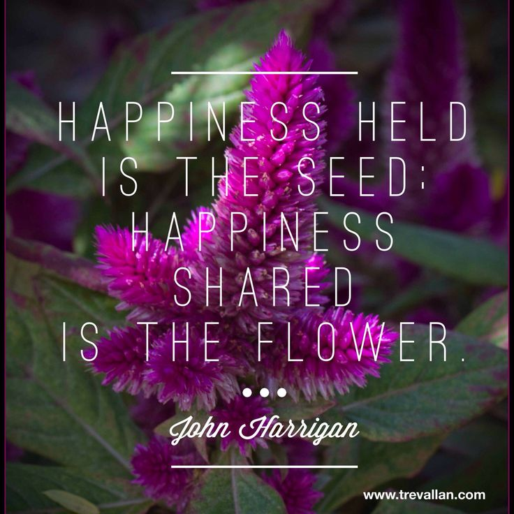 Happiness held is the seed: happiness shared is the flower