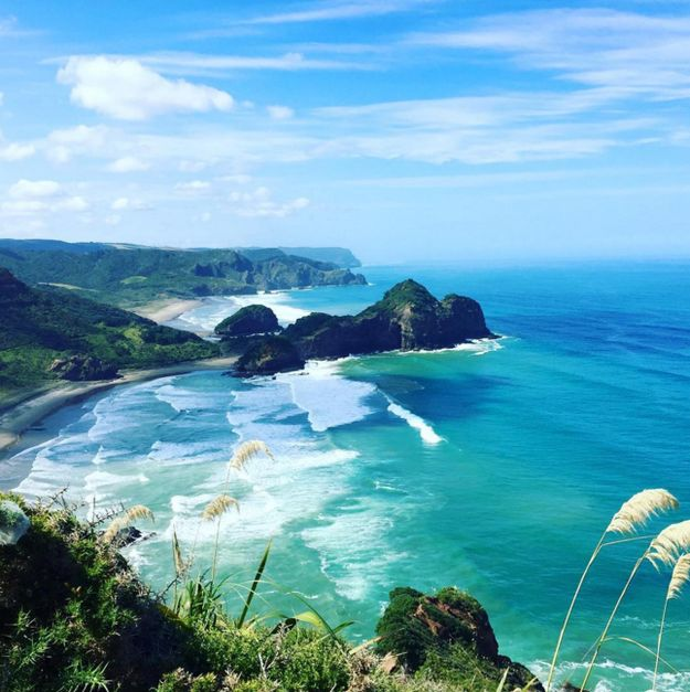 Take a walk along one of the prettiest coastlines in the world. | 16 Things You Didn't Know You Could Do In Auckland