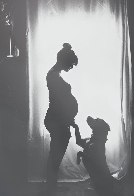 Babies AND dogs? Almost too much to handle. Maternity photos reach a whole new level of adorable when the dog gets in on the shot.