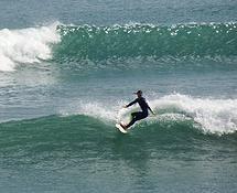 Saltwater Eco   Surf Omaha   Snorkel Goat Island and Tawharanui   NZ